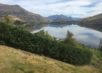 Lake Hayes - Queenstown Arborist RoyalTree