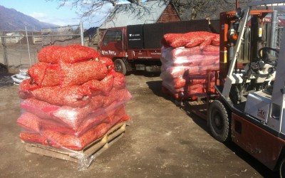 Woodchips for sale!