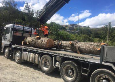 save-wood-3